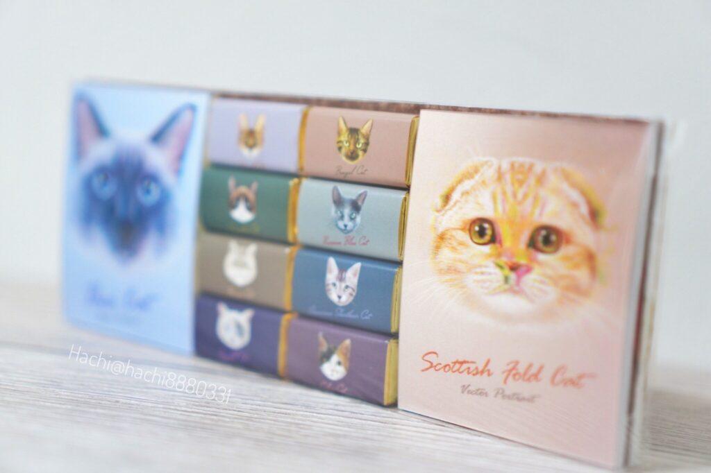 キャット メモパット チョコレート 572円