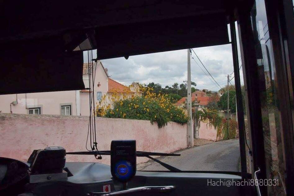 ロカ岬へ向かうバスの中