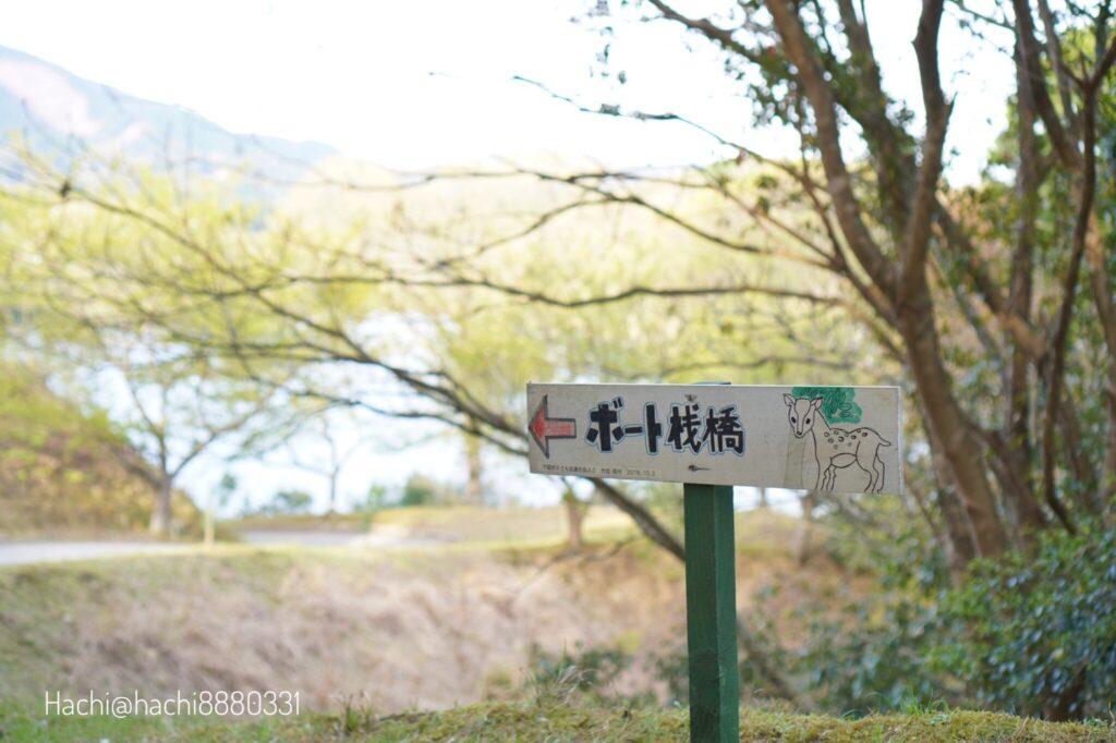 豊田湖畔キャンプ場ボート桟橋へ向かう道