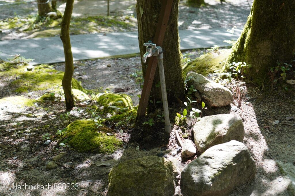 寂地峡キャンプ場のテントサイト12番の水道