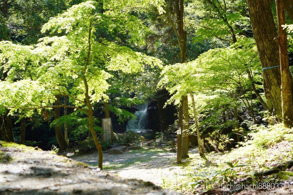 寂地峡キャンプ場のテントサイト12番からの景色。竜尾の滝が見える。