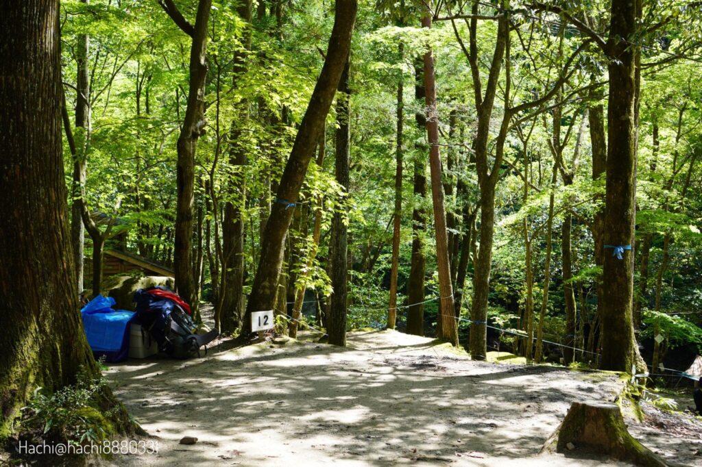 寂地峡キャンプ場のテントサイト12番
